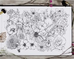 February Flowers ink illustrations