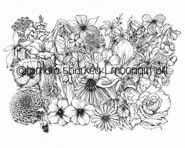 February Flowers Ink Illustration